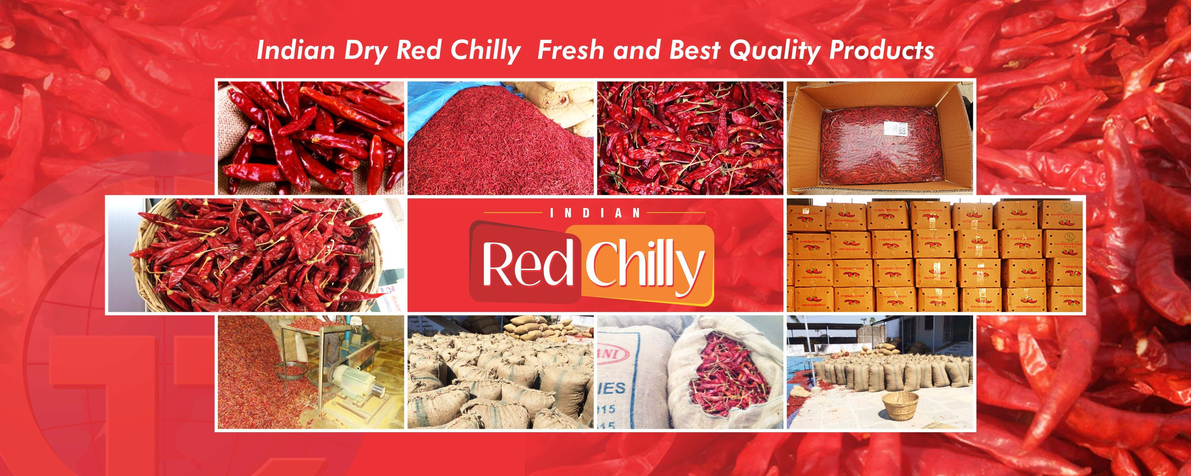dry-red-chilly-banner