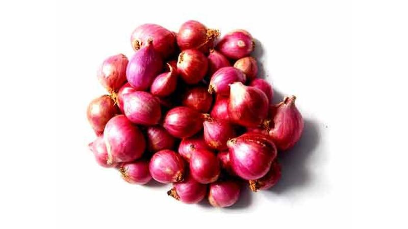 Geewin Exim - Fresh Vegetables Exporters from India